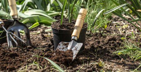 Bahçelerimizi Güzelleştirme Zamanı